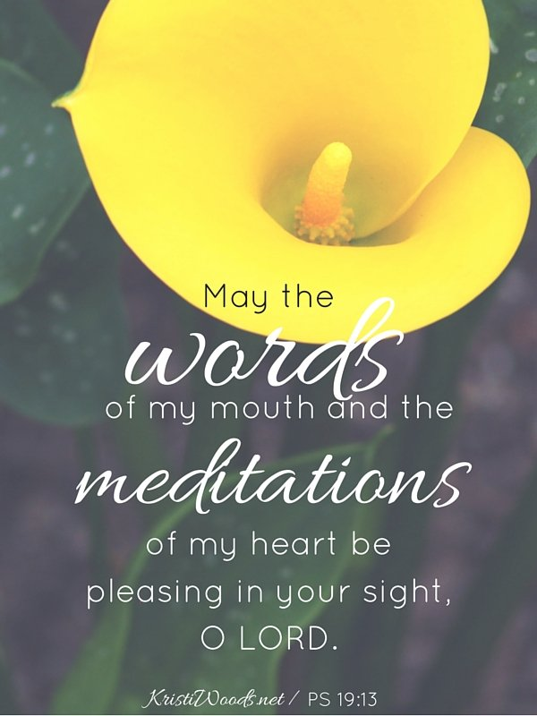 May the words of my mouth and the meditations of my heart be pleasing in your sight, O LORD.