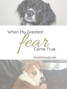"two dogs, one at the top and one at the bottom, with the words ""When my greatest fear came true"" written between them"