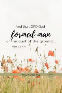 Gen. 2:7 written in black, poppies in background
